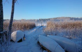 Winter in Schweden Bild von Silke Nordfjäll