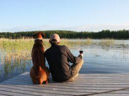 Schweden-Urlaub mit Hund
