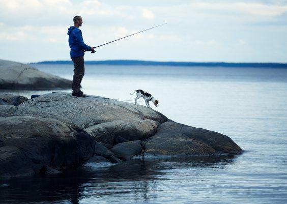 Ferienhaus Schweden alleinlage mit Hund