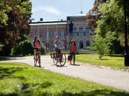 Uppsala Sehenswürdigkeiten